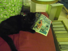 comic reading cat