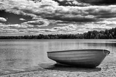 Lakeside loner