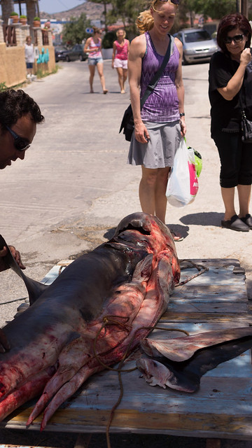 Carving up a shark on Finikas, Syros
