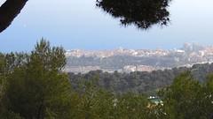 Monaco from Beausoleil, Provence-Alpes-Côte d'Azur
