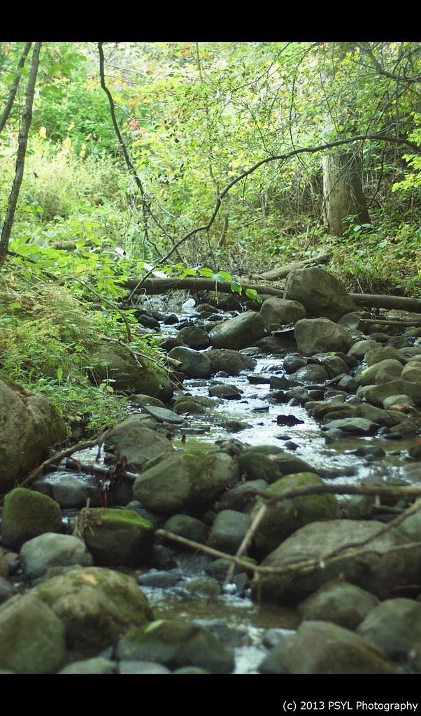Bears Creek