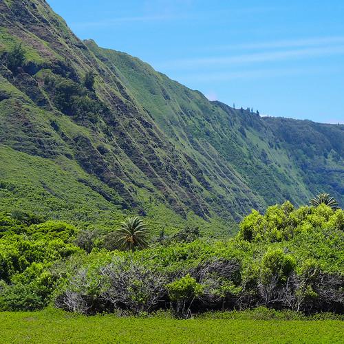 green square hawaii shoreline cliffs squareformat pali molokai kalaupapa