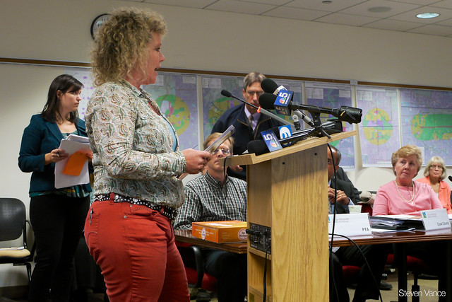 Virginia Hamman brings 4,000 petitions against proposed farmland-destroying tollway