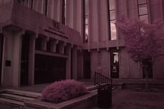 James Branch Cabell Library Infrared Photo