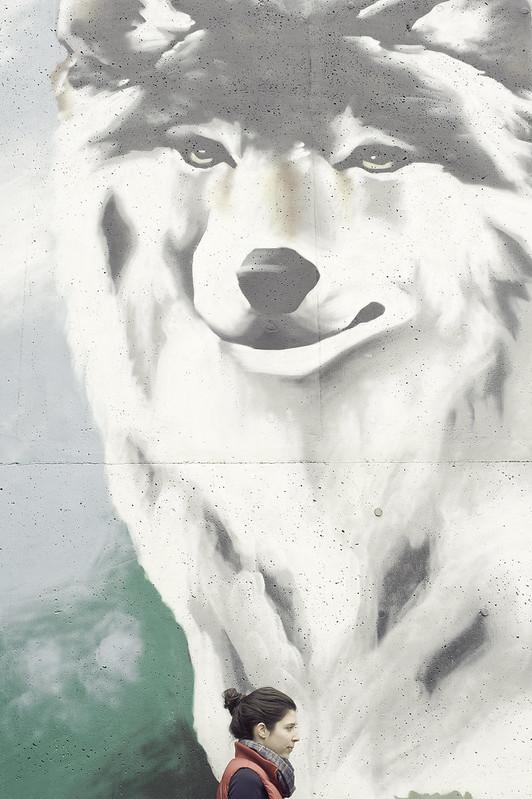 monicawithwolf
