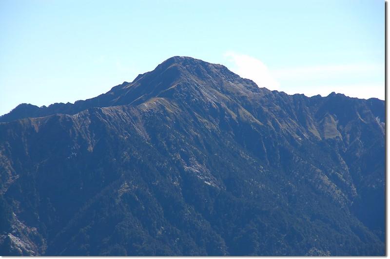 奇萊主山 from 合歡主山步道