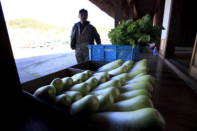 山麓庵に並んだはらっぱー大根と生産者の坂井さん.この大根は参加者へのお土産げとなった.