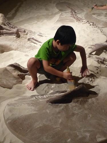 Titans - fossil pit