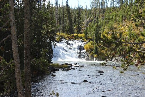 IMG_1991_Lewis_Falls_Yellowstone_NP