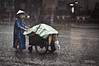Saigon Rain by staffan.scherz