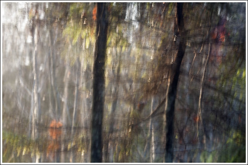 20131123. Fog and morning light. Camera painting. 5316.