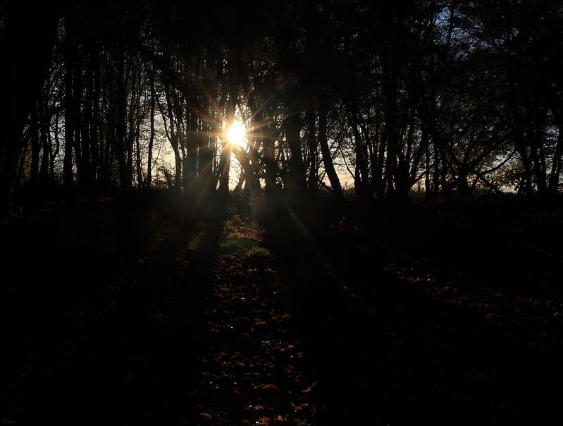 sunrise79