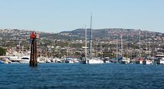 Newport Beach Harbor