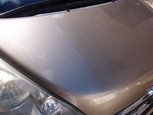 鳥の糞を落とす洗車