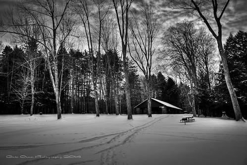 park new york camping trees blackandwhite bw snow newyork outdoors blackwhite state newyorkstate gilbertlake newyorkstatepark gabeoram