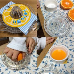 レモンしぼり器でみかんジュース作り!