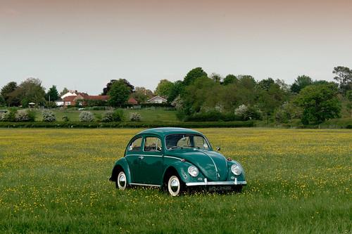 VW Beetle photo