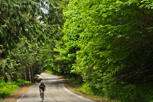 Burn Road Loop in Vernonia-26