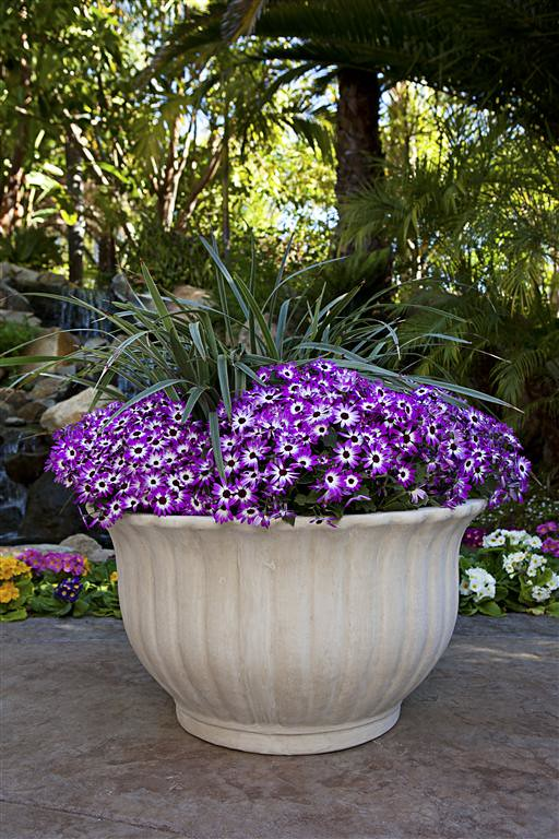 Fluted Bowl Planter