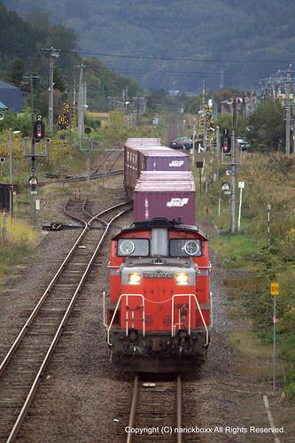 JRF DD51 - Japanese diesel locomotive -(9)
