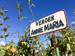 Verger Andre Maria - Photo of Saint-Marc-la-Lande