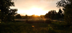 South Platte Sunset