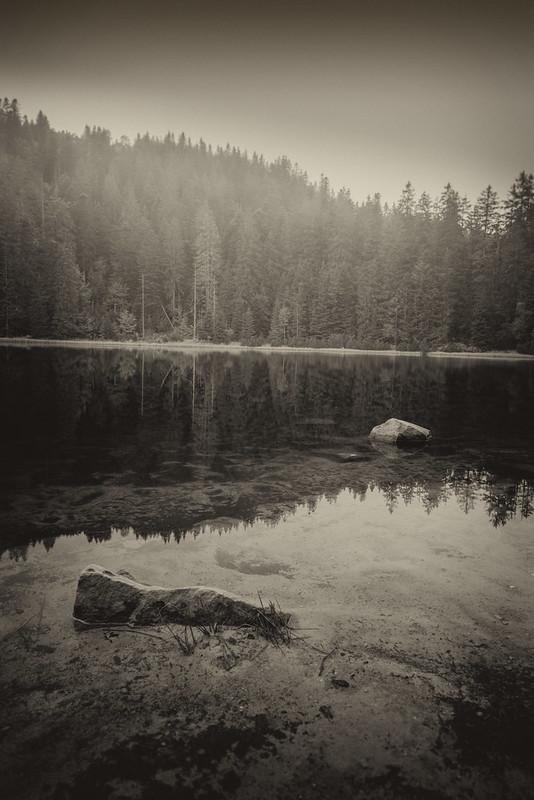 Wildsee sw DSC01889
