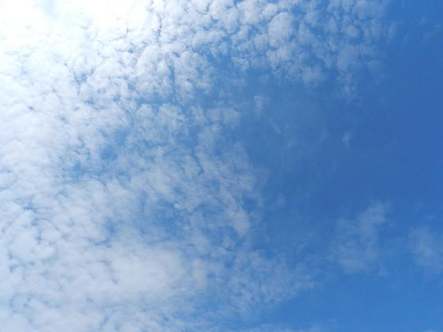 skywatchDSCN1484