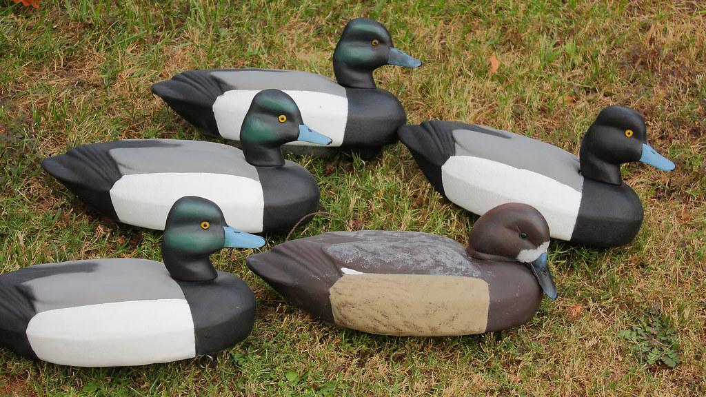 Blue Goose Decoy Paint