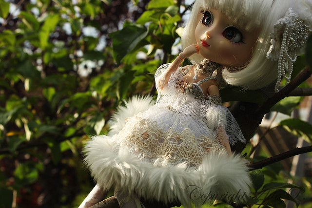 Apple tree dreamer