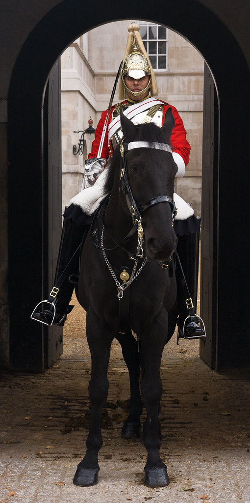 Household Horse Guard