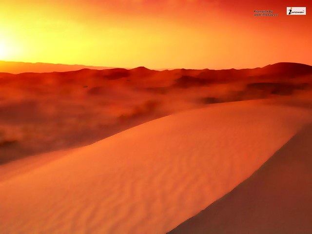 Arabian Desert sunrise WallpaperDesert Sunrise Wallpaper