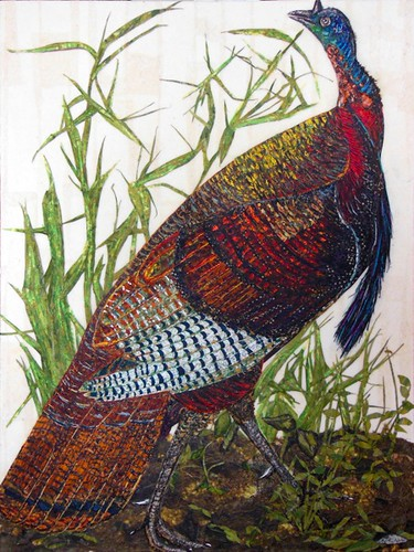 wild-turkey-paper-collage