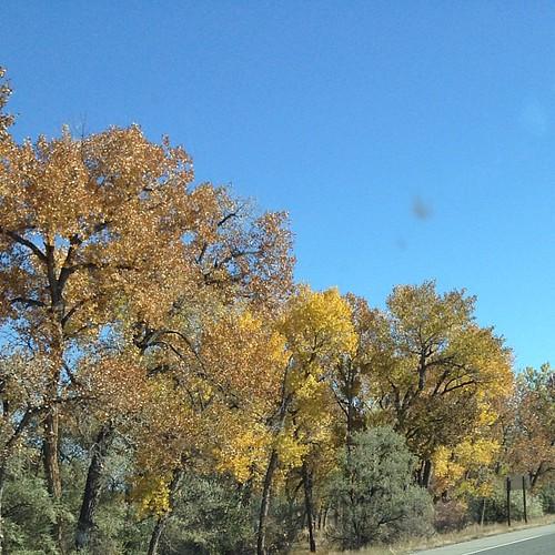 Autumn shades in Manderson, Wyoming #autumn