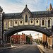 Christ Church Cathedral bridge, Dublin Ireland by Maria_Globetrotter
