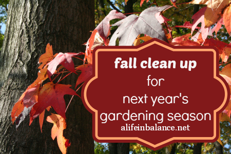 Next year's gardening season starts in the fall with cleaning up the vegetable and flower beds and preparing your garden for winter.