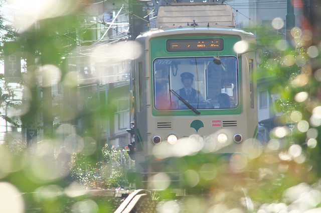 Tokyo Train Story 都電荒川線 2013年11月16日