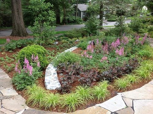Image of conservation landscaping at a residential property.
