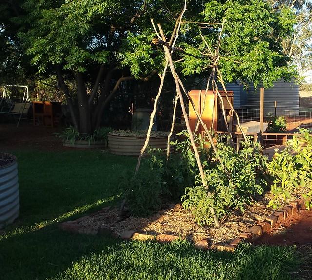 garden share 4