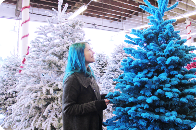 {december 1} our tree | final purchase
