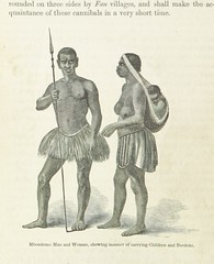 """British Library digitised image from page 112 of """"Explorations and adventures in Equatorial Africa; with accounts of the manners and customs of the people and of the chace of the gorilla, crocodile, leopard, elephant, hippopotamus and other animals. (Seco"""