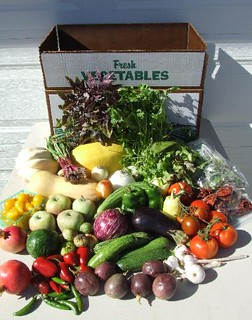a selection of vegetables from a CSA box