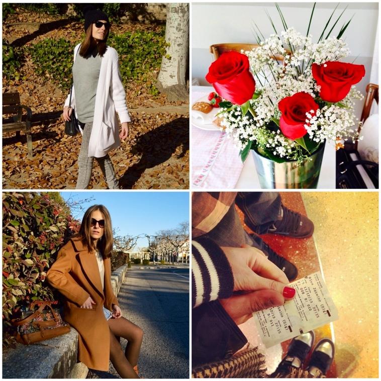 lara-vazquez-madlula-snapshots-winter-rosas