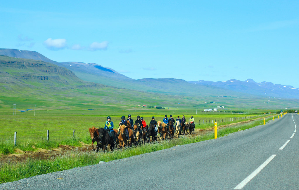 Iceland, Day 6 [3]