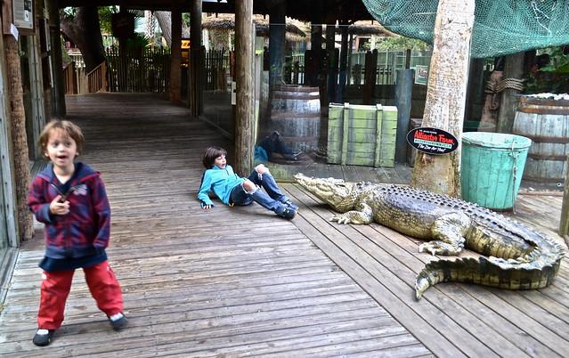 St. Augustine alligator farm - kids activities
