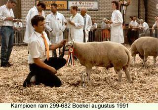ram 299-682 - 1991