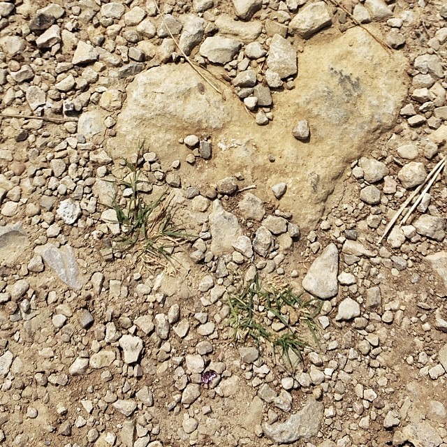 Love really is all around...#365grateful #heart #rock #love