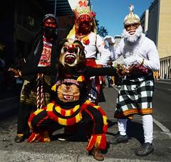 Adelaide Australia day  2014 international street parade