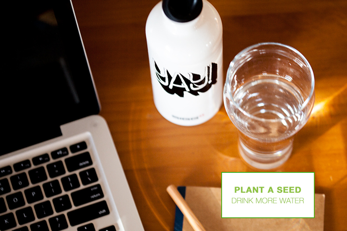 plant a seed // drink more water