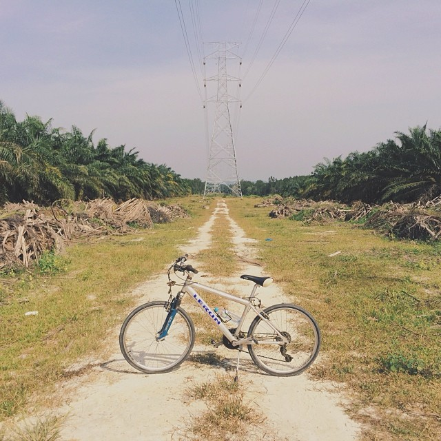 This morning's ride in Kampung / G1 / #vscocam